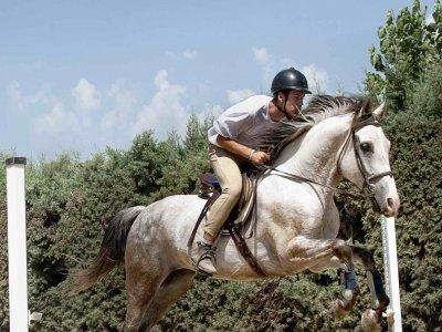 Campamento urbano de equitación en La Adrada