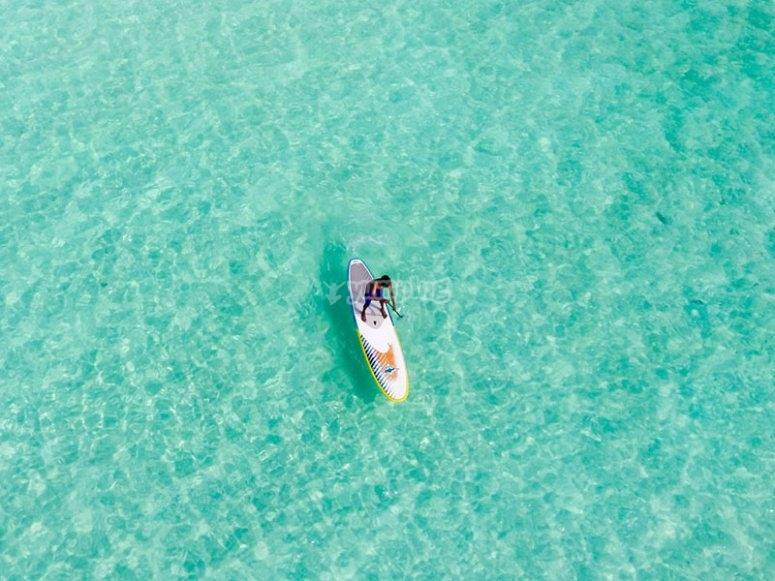 Podras hacer paddle surf