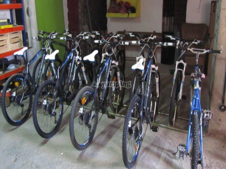 Bicicletas para la ruta