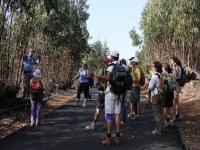 grupo de personas explorando la naturaleza