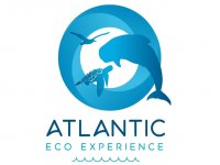 Atlantic Eco Experience Avistamiento de Cetáceos