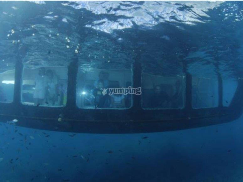 Ventana submarina en el catamarán