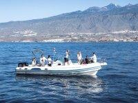 Embarcacion para avistamientos