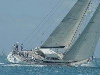 这些有趣的帆船比赛中的各种帆船