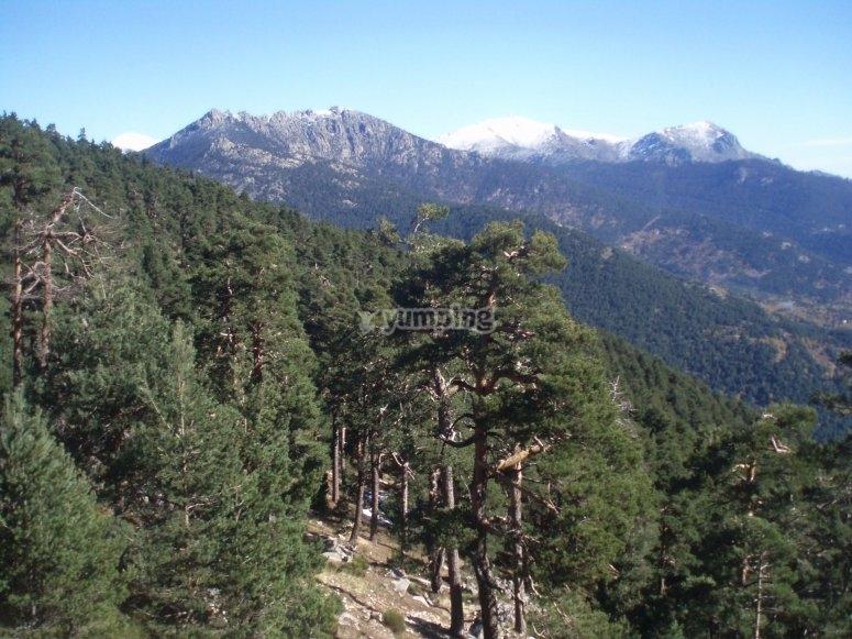 Sierra de Guadarrama al norte de Madrid