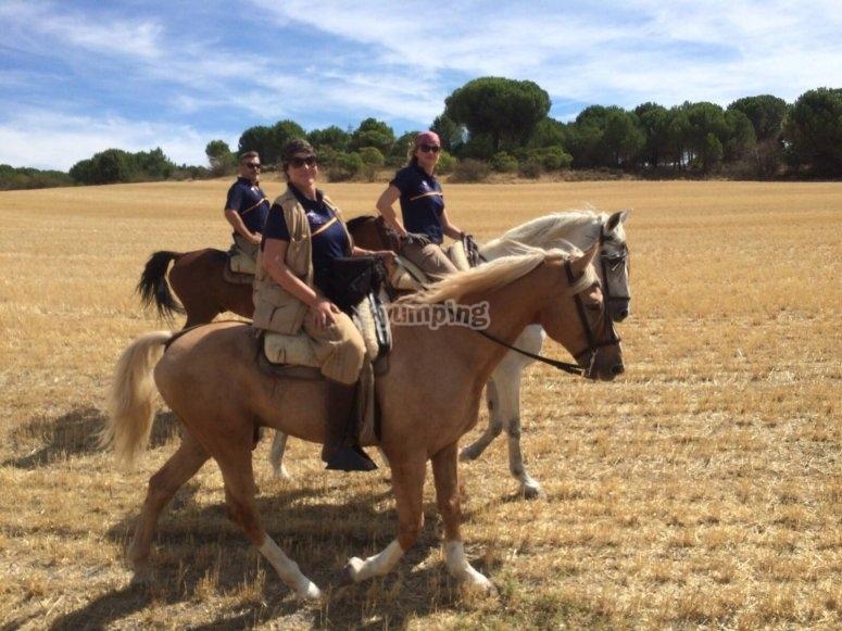 在乡村骑马