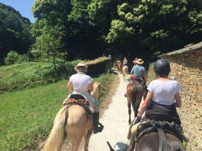 Visita guiada y ruta a caballo en inglés Burgos