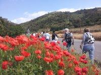 Salida Nordic Walking por alrededores de Barcelona