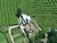 The winery seen from above