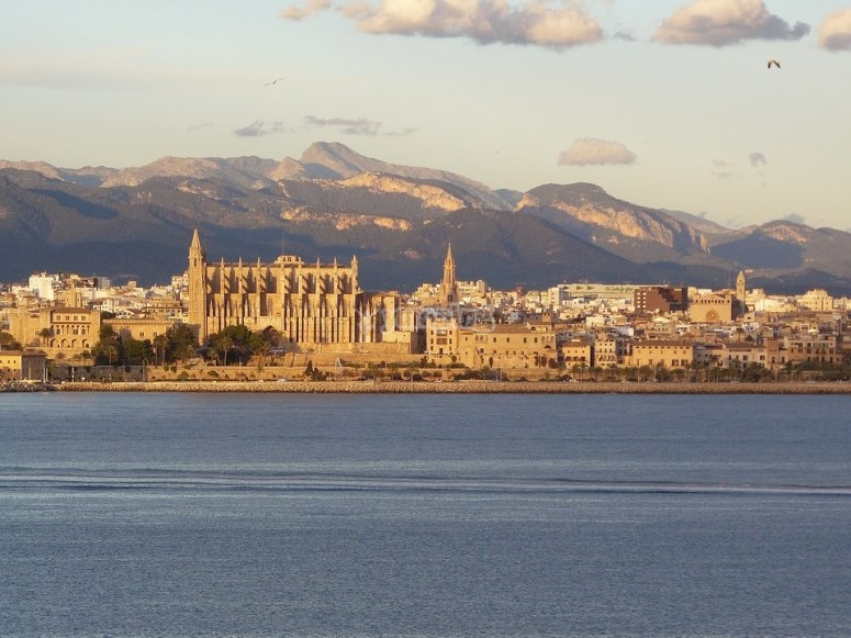 Explore Majorca in a sustainable way