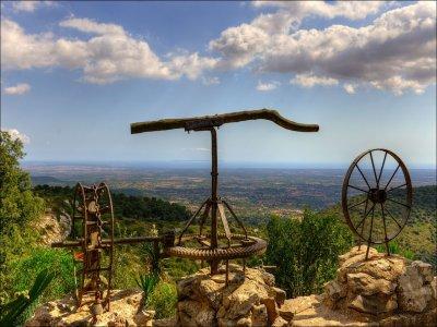 Paseo en bici y degustación de vinos en Mallorca