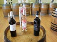 比尼亚斯酒厂桶的葡萄酒