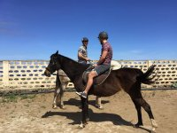 Horse riding classes for all levels