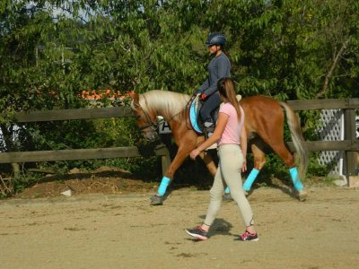 5 horse-riding classes pass at Granollers