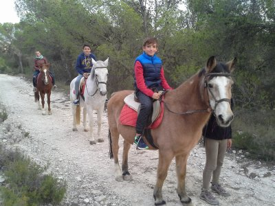 Ruta a caballo por la Sierra de Alicante 45 min