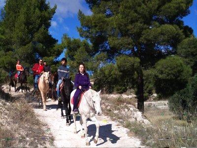1h horse ride trip in Sierra de Maigmó