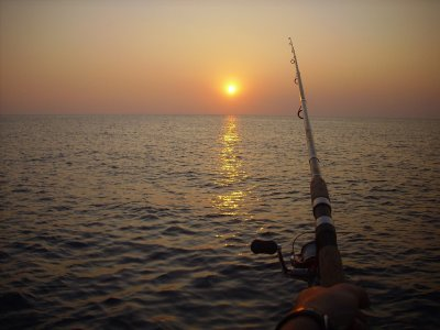 Boat rental for fishing in Vizcaya 4h