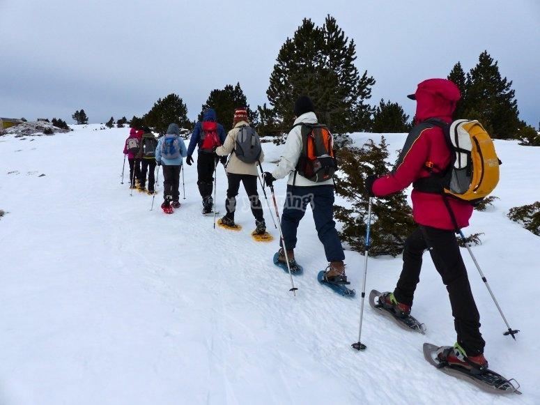 Raquetas de nieve y bastones para todos
