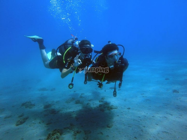 Diving in the sea with the instructor