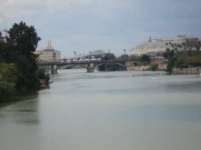 Boat Trip On the Guadalquivir River, 3h