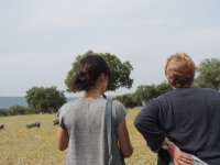 Wine tourism route in the meadow of Extremadura
