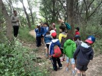excursion por el bosque