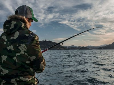 See dolphins & fishing in Guipúzcoa