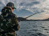 Ver delfines y pescar en Guipúzcoa