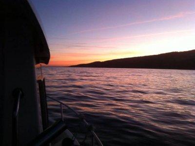 Fishing boat + dolphin sighting, Gipuzkoa