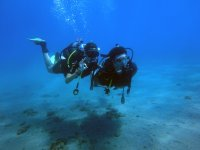 3h Diving baptism in shores of Andalusia