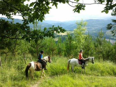 Horse Riding/English Camp, Lastur, 1 Week Sunmer