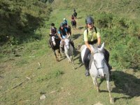 Campo di equitazione nei Paesi Baschi
