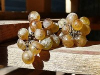 bunches of grapes on a table