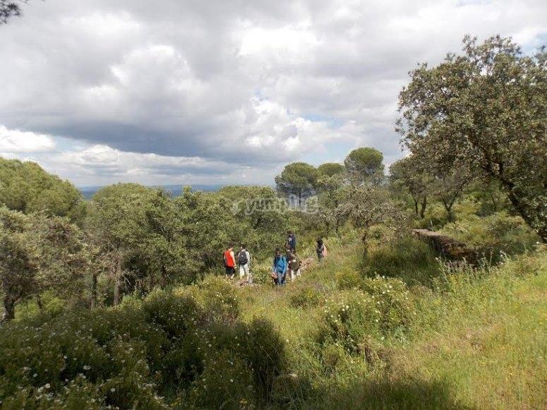 Grupo de amigos haciendo senderismo