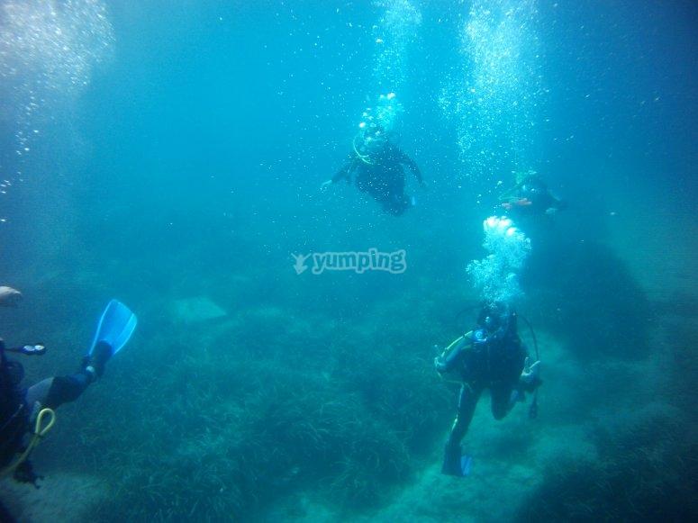 潜水期间跳水