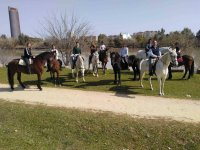Equestrian excursion in Seville