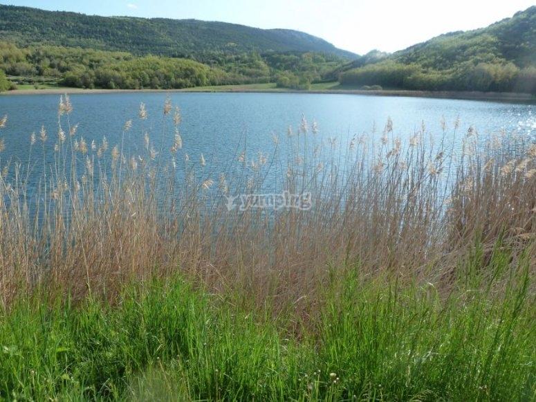蒙特科特湖景观