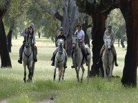 Horseback riding through the Jerte countryside