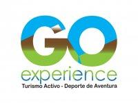 Go experience