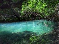 Preciosas vistas del rio Ega