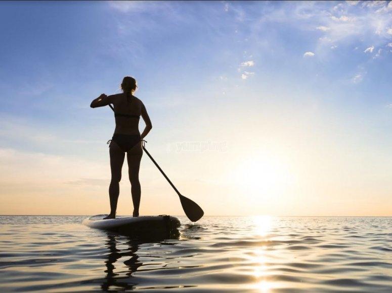 发现一个运动健康和乐趣水