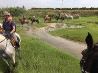 Junto a la ribera del río con los caballos