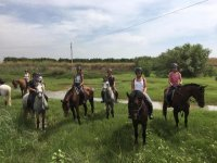 Paseo a caballo por el interior de Castellón