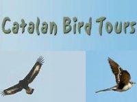Catalonian Bird Tours