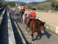 Campamento de equitación en Pontevedra