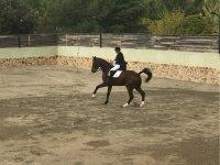 En la pista entrenando con el caballo