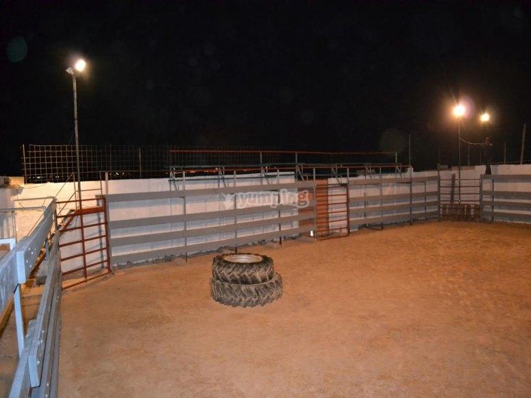 Plaza por la noche