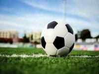 balon de futbol en la linea blanca de un campo de futbol