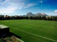 gran campo de futbol verde con arboles en sus alrededores