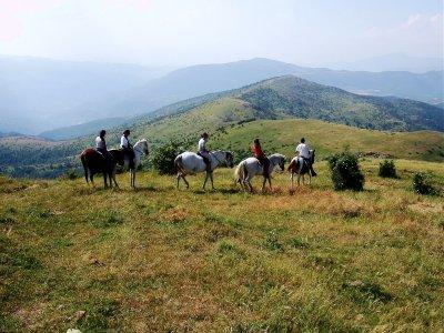 Paseo a caballo por L´Estany de Montcortés de 1h
